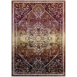 Success Kaede Transitional Distressed Vintage Floral Persian Medallion 4x6 Area Rug - Multicolored