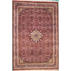 Delhi Hand Knotted Rug 6 x 9