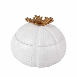 "Polyresin 5"" Sea Urchin Box - White and Gold"